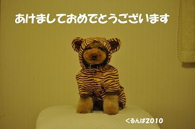 くるんぱ2010.jpg