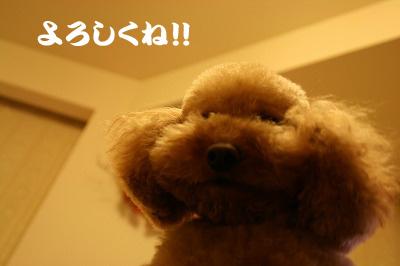 IMG_7190のコピー.jpg